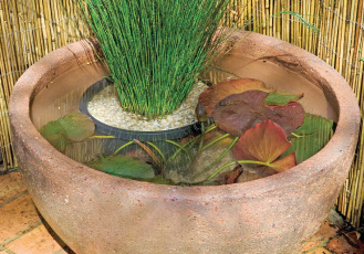 OldStone Water Bowl with Plants