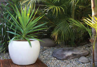 PrecinctLITE planter with Yucca on a deck